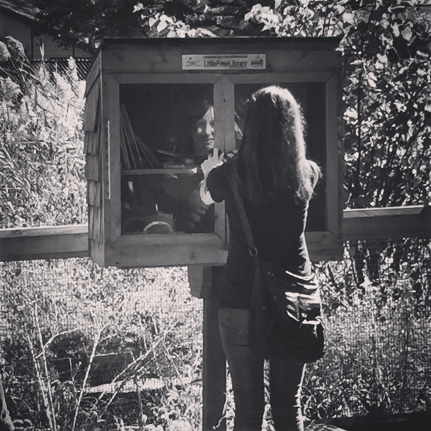 Little Free Library #12
