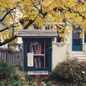 Little Free Library #19