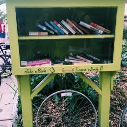 Little Free Library #31