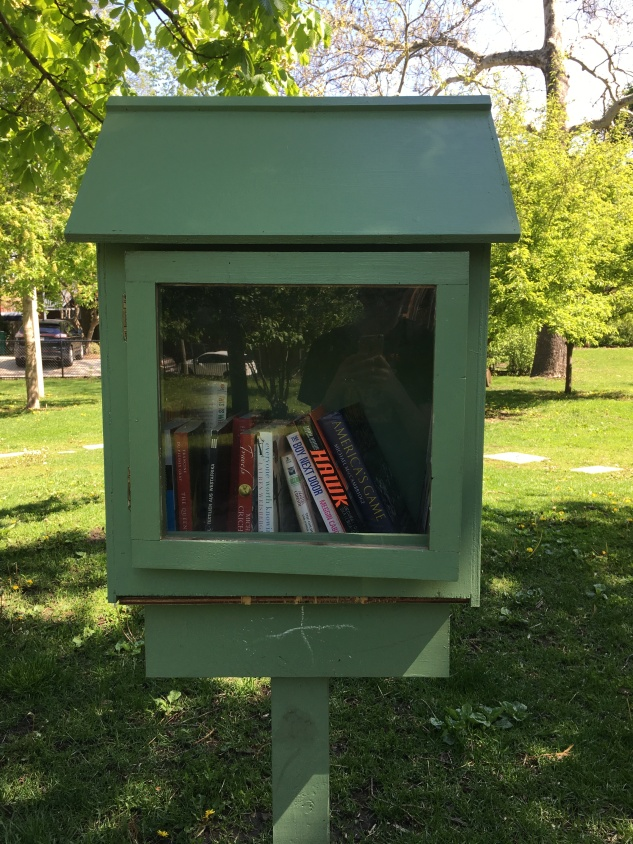 Little Free Library #41