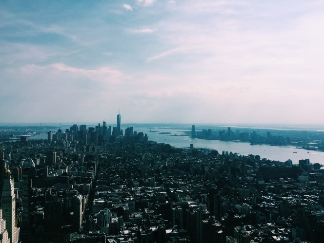 The view from the Empire State Building in New York City.